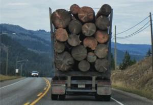 Nicholas Bradley - logging truck 2016