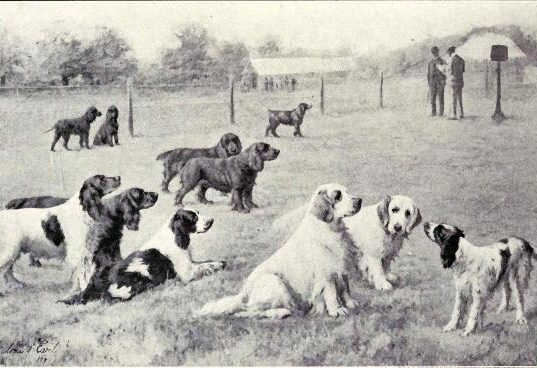 W. E. Mason - Dogs of all Nations, 1923