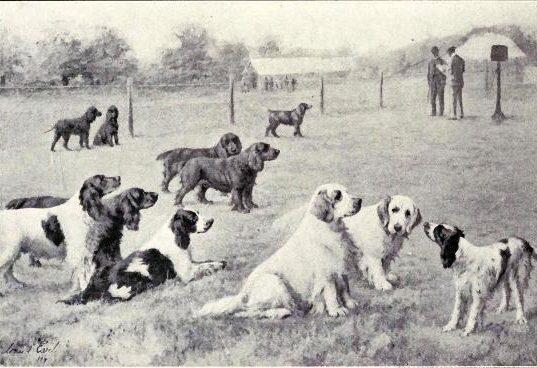 W. E. Mason - Dogs of all Nations, 1923